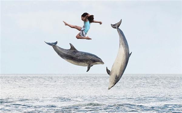 Nô đùa cùng những chú cá heo trên biển cả.