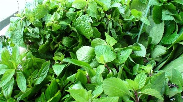 Để phân biệt rau củ bị nhiễm độc, bạn nhất định phải biết 6 cách này!