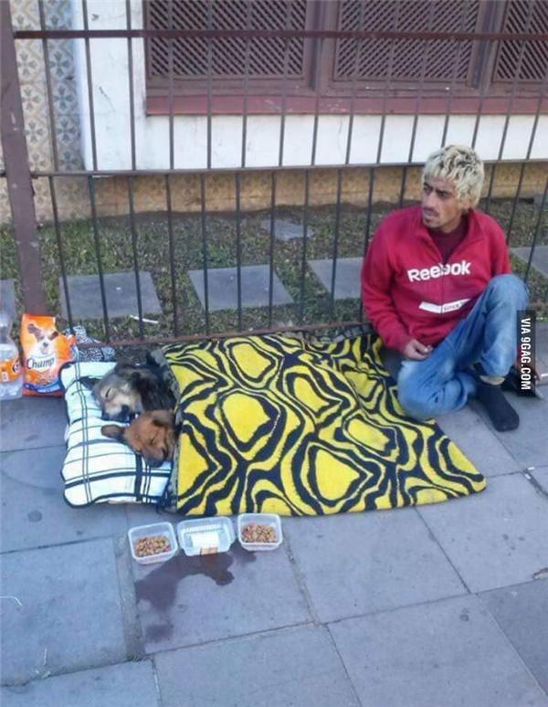 Chỉ cần thấy những chú cún cưng của mình được no đủ, những người vô gia cư này đã thấy ấm lòng rồi.