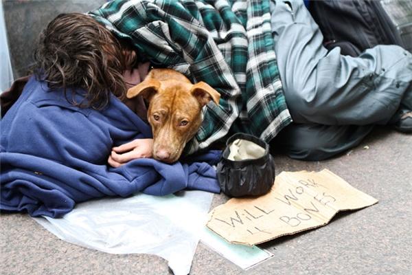 Người đàn ông này phải làm việc chỉđể kiếm một cục xương cho chú chó của mình khỏi đói.