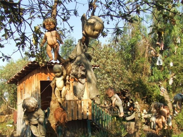 Những con búp bê được treo trên các cành cây vàdây phơi.