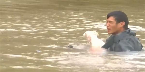 Cuối cùng người đàn ông cũng cứu được cả con chó nhỏ của người phụ nữ