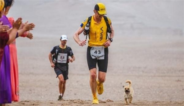 Cô nàng tiếp tục tham gia chạy cùng các vận động viên vào những ngày tiếp theo.
