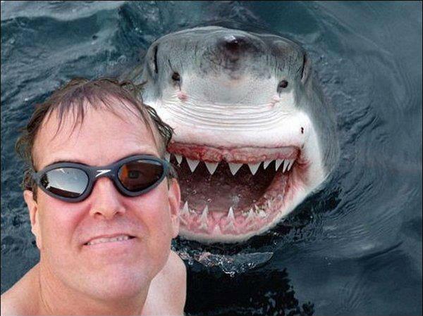 Răng của ông anh còn lâu mới bằng tui nhé!(Ảnh: Internet)