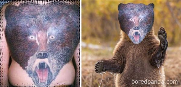 Bé gấu có khuôn mặt thảng thốt gây hoảng hốt cộng đồng mạng.