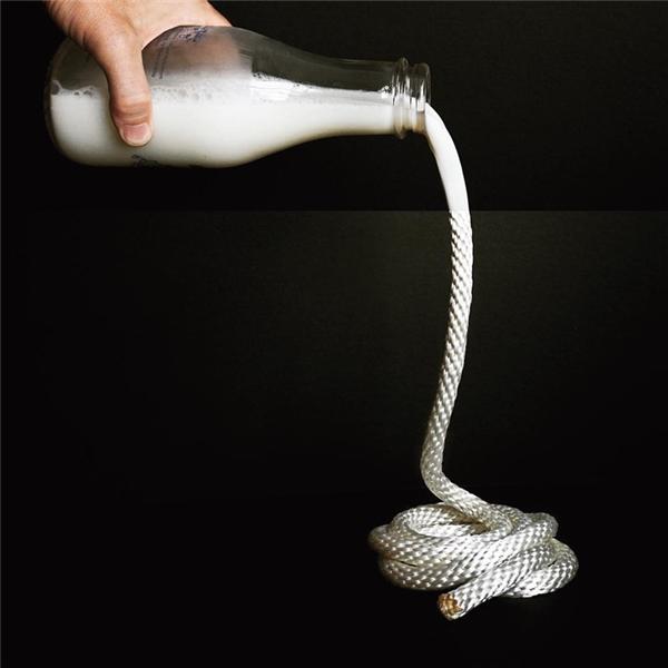 Dòng sữa đã hóa thành sợi dây thừng.