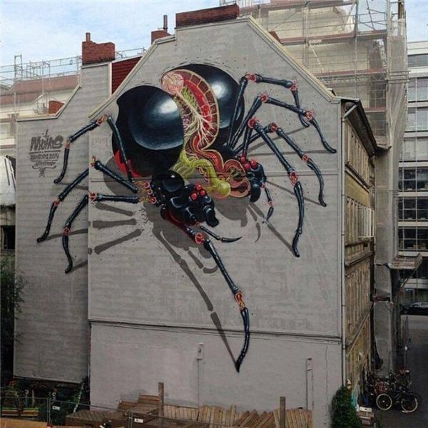 3. Phải chăng nơi đây vừa xảy ra đại chiến diệt vong của những con nhện khổng lồ?