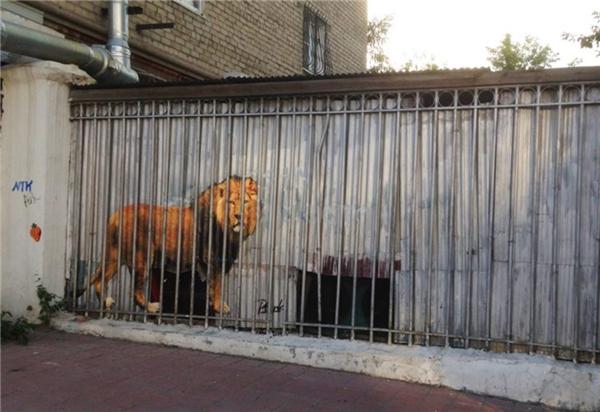 12. Chiếc chuồng bé tí tẹo thế kia mà sao người ta lại nhốt con sư tử to đùng vậy.