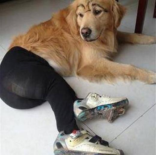 Em chuẩn bị đi tập thể dục buổi sáng.