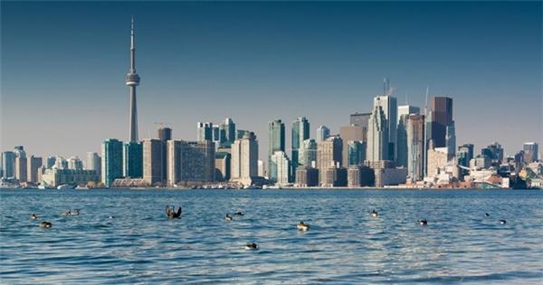 4. Toronto, Canada: Với đường chân trời ấn tượng và tòa tháp CN nổi tiếng, thành phố đông dân nhất Canada xếp vị trí số 4. Ảnh: Dialogueacademy.
