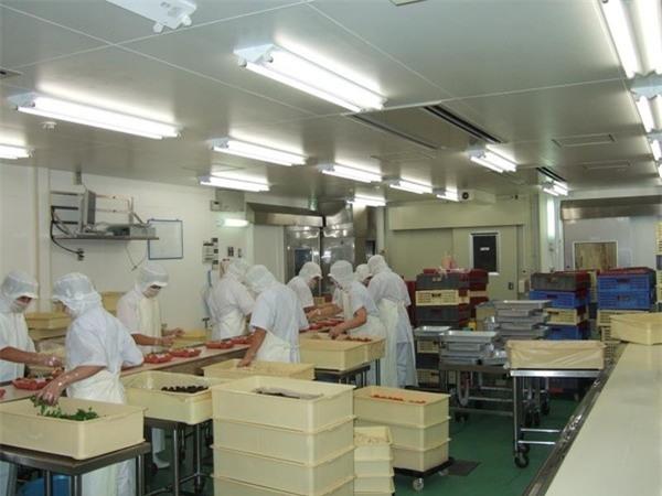 Các công nhân sẽ làm việc theo nhóm dưới sự hướng dẫn của một tổ trưởng.