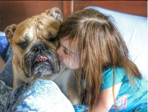 Cô chủ nhỏ cũng không quên tặng Harvey một cái hôn thay cho lời cảm ơn vì đã luôn bên cạnh cô đến giờ phút này.
