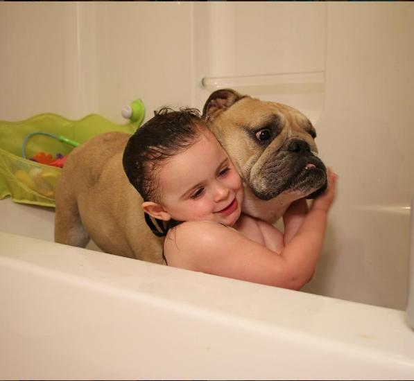 Thỉnh thoảng còn biết tắm cho nhau nữa, nhưng sao mặt mày Harvey lại thất kinh thế kia?