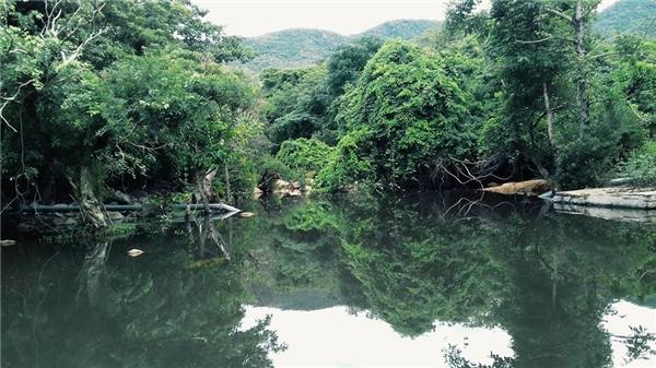 Leo núi, lên rừng, xuống biển... bạn sẽ nghĩ gì khi đứng trước một bức tranh thiên nhiên hoàn mĩ này?