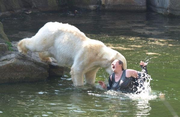 Chắc chắn là đau lắm. Nhưng cô ấy làm gì trong chuồng gấu thế này?