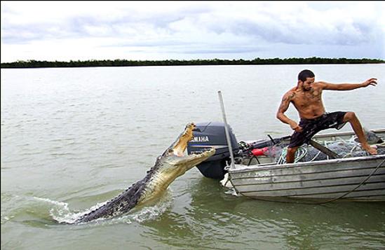 Đang ở trên thuyền giữa dòng sông bát ngát thế này, anh chàng định chạy đi đâu?