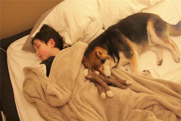 Đùa giỡn mệt thì cùng lăn ra ngủ.