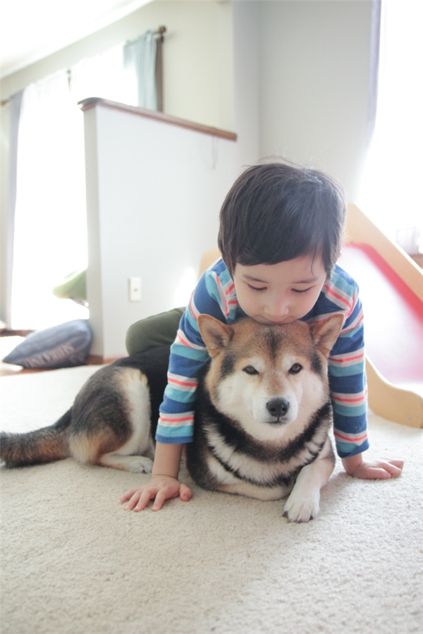 Tan chảy với đôi bạn người - chó dễ thương nhất Nhật Bản