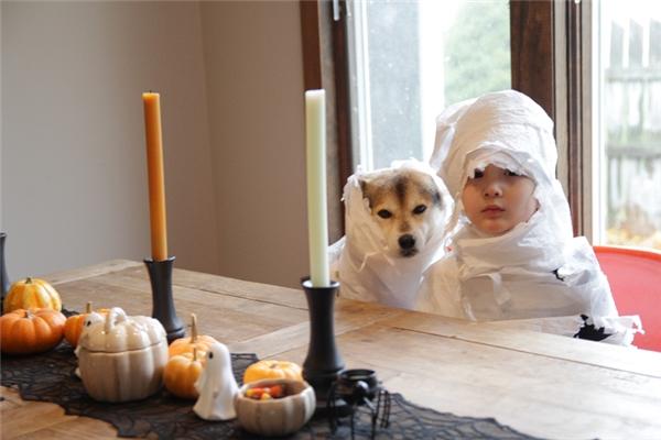 Cùng hóa trang thành xác ướp chơi Halloween, xem ai đáng sợ hơn nè.