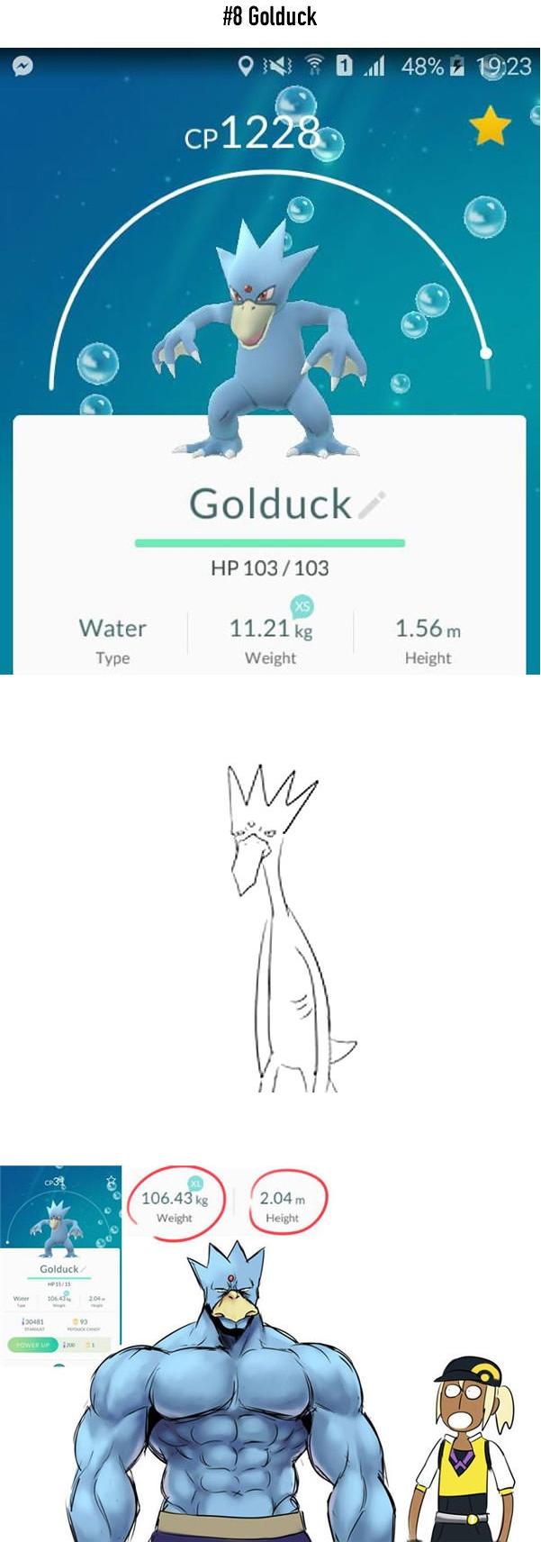 Golduck cũng không khá khẩm hơn, từ một Pokemon dài thượt mà ốm nhom thì anh chàng bỗng trở thành... lực sĩ với chiều cao 2,04m và nặng 106,43kg.
