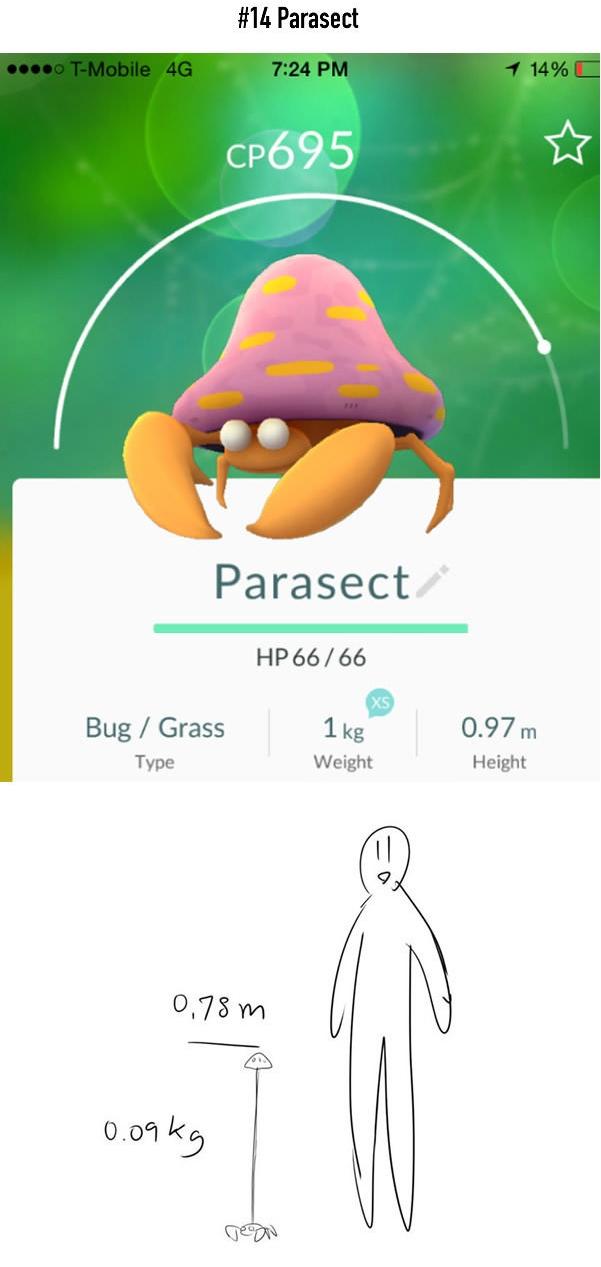 Hóa ra cây nấm trên lưng là để giấu gọn... chiều cao của Parasect, chứ anh chàng cao tận 0,97m lận mà.