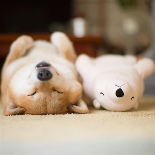 Sau khi té nhừ người rồi thôi lăn ra ngủ luôn cho nó lành.