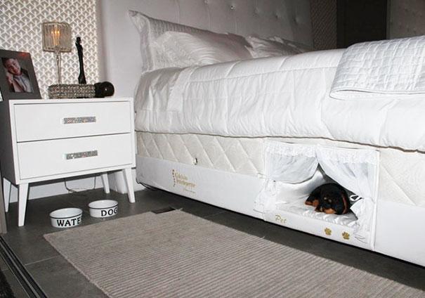 Cho em một góc ngay dưới giường ngủ, vừa ấm áp lại vừa gọn gàng! (Ảnh: Internet)