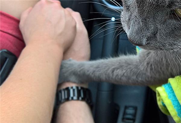 Nhè nhàng nắm tay như một lời an ủi, động viên vàgửi gắm yêu thương lần cuối.