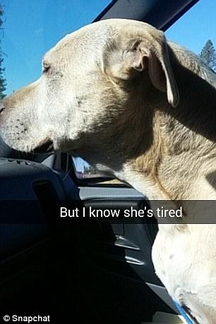 Và cô ấy biết nó đang rất mệt mỏi.