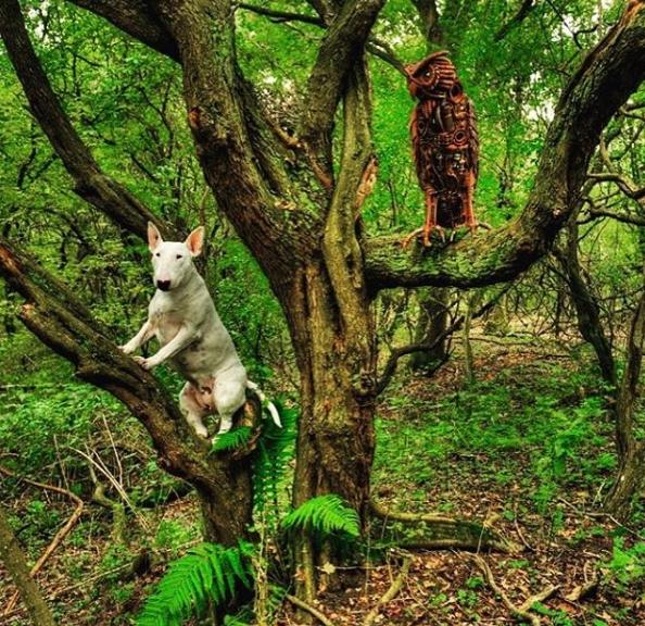 Chỉ để hòa mình vào đất trời rừng núi.