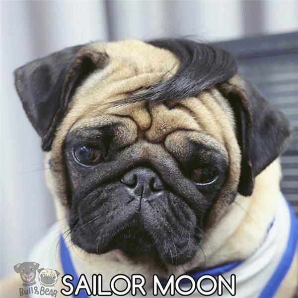 Sau khi đi trừ gian diệt bạo về thì Thủy thủ Mặt trăng chỉ còn lại một bên mái.