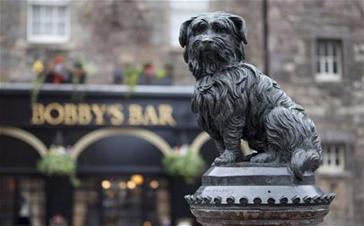 Chú chó nhỏGreyfriars Bobbyquyết không rời mộ chủ nhân trong 14 năm là một câu chuyện cảm động, ý nghĩa về một tình bạn chân thành đã khắc sâu trong lòng nhiều người.