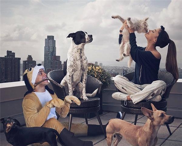 Cách tốt nhất để kết thân với Ariana Grande là đóng giả chó và chờ được cô nàng ngó đến.
