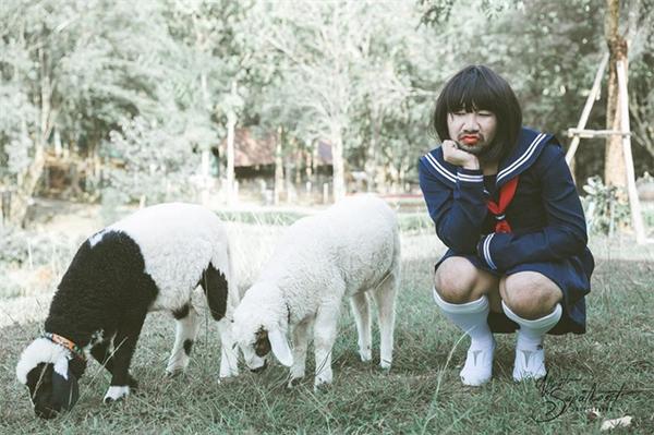 Người ta bảo làm trò con bò còn hai đứa mày đúng là lìu tìu con cừu.