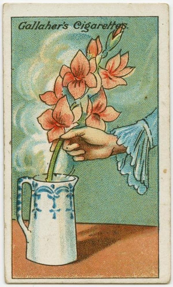Bạn mua được bó hoa yêu thích nhưng hơi héo? Hãy ngâm rễ của hoa vào trong nước nóng, để như thế đến khi nước nguội hoàn toàn. Sau đó, cắt bỏ rễ và cắm vào nước theo như cách thông thường. (Ảnh: twistedsifter)