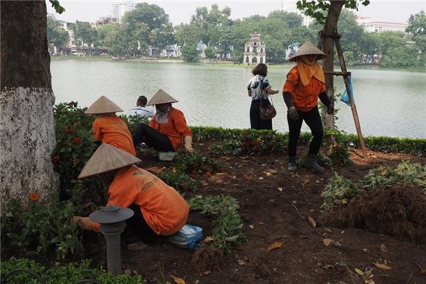 Song song với các dịch vụ công cộng, công tác chỉnh trang đô thị quanh khu vực Hồ Gươm cũng đang được công ty Môi trường Đô thịvà công ty Cây xanh gấp rút triển khai kịp ngày lễ Quốc Khánh 2/9