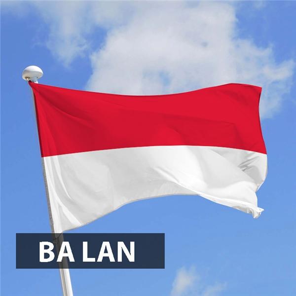 Màu trắng biểu trưng cho sự trong sạch, minh bạch và màu đỏbiểu tượng cho máu và chủ nghĩa anh hùng của đất nước Ba Lan. Ngoài ra, nhiều người cho rằng màu trắng lá cờ nàytượng trưng cho màu conchim ưng theo một truyền thuyết của người Ba Lan vàmàu đỏ đại diệncho dân tộc.