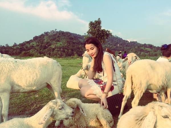 Có một cánh đồng cừu đẹp như mơ cách Sài Gòn chỉ 2 tiếng chạy xe