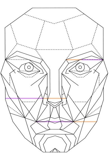 Dựa trên nhiều yếu tố về nhân trắc hoạ và những áp dụng của những công thức trước đó, Gillian Da Silva đã tạo ta tỉ lệ vàng trên khuôn mặt một cách công phu.