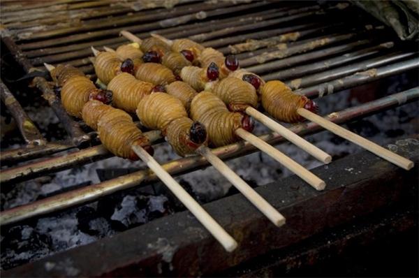 Cameroon: Palm weevil (Đuông dừa) là ấu trùng của một loại bọ cánh cứng sống bên trong cây dừa. Đây được xem là một món ăn rất bổ dưỡng. Ảnh: Pxhidalgo/iStock.