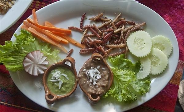 Mexico: Sâu của cây lô hội nướng chín, ăn kèm với nước sốt được làm từ quả bơ là một món ăn khoái khẩu của người dân Mexico. Ảnh: Lizorozco/iStock .