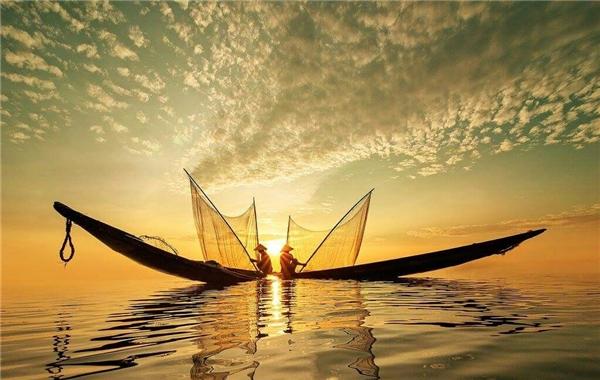 14. Cánh nắng - Nguyễn Ngọc Hòa