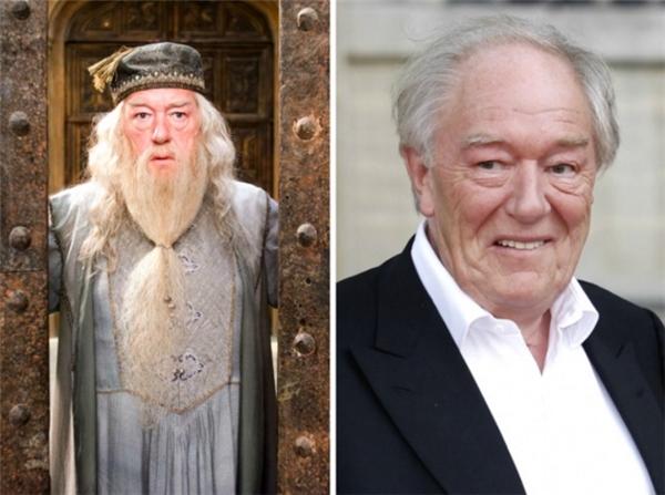 Hiệu trưởng đáng kính của trường Hogwarts nổi tiếng đãgià đi thấy rõ với mái tóc bạc trắng, không những thế khuôn mặt của thầy cũng mập lên trông thấy.