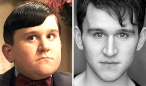 Dudley Dursley khi kết thúc phim đã giảm cân khá nhiềukhiến nhiều người không còn nhận ra đây là người anh họ xấu tính của Harry năm xưa.