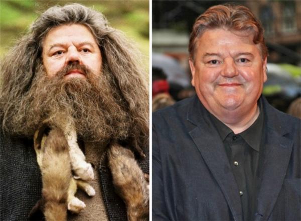 """Giáo sưRubeus Hagrid, một trong những người giúp đỡ và bảo vệ Harry ngoài đời cũng """"khổng lồ"""" không kém trong phim."""