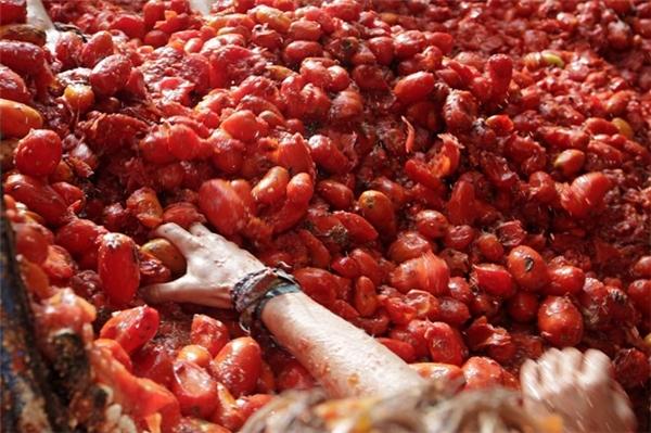 La Tomatina là lễ hội ném hoa quả lớn nhất châu Âu, diễn ra vào ngày thứ Tưcuối cùng của tháng 8 ởthị trấn Bunol, Tây Ban Nha.