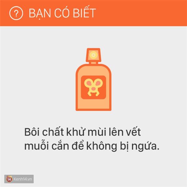 Chất khử mùi, hoặc khử trùng như cồn có tác dụng làm giảm ngứa.