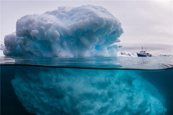 Sự thật ẩn saunhững tảng băng lớn đangtrôi lênh đênhtrên biển