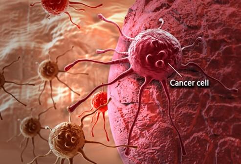 Tế bào ung thư trong máu. (Ảnh: internet)
