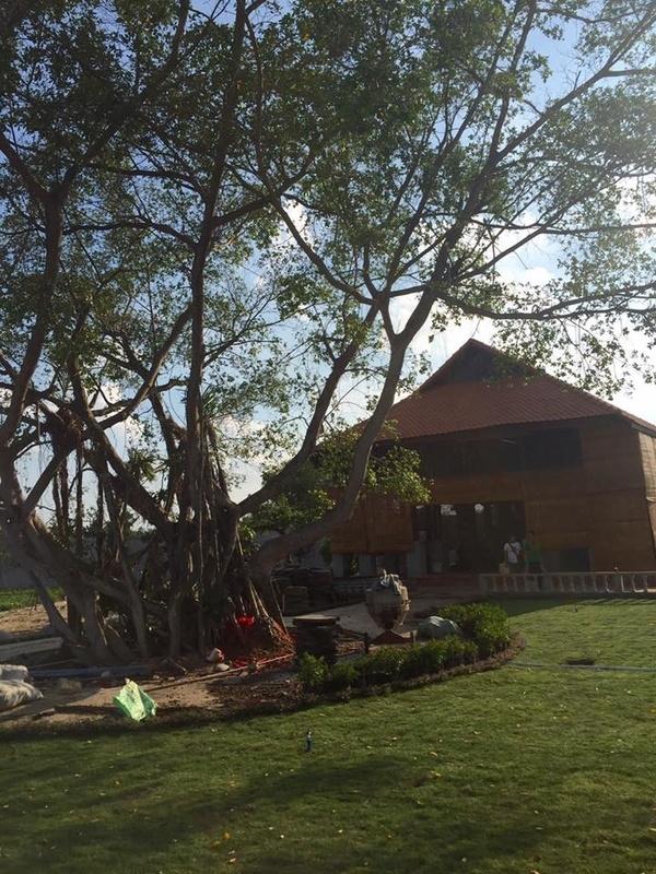 Hé lộ một số hình ảnh nhà thờ Tổ của Hoài Linh sau khi bị cấm xây dựng - Tin sao Viet - Tin tuc sao Viet - Scandal sao Viet - Tin tuc cua Sao - Tin cua Sao